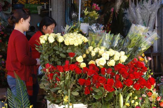 Hoa Đà Lạt sẽ tăng giá mạnh dịp lễ 20-11 - 1