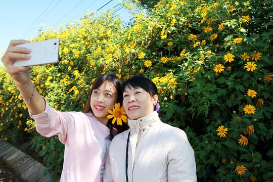 Lâm Đồng vàng óng sắc hoa dã quỳ dưới nắng đầu đông - 1