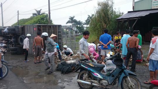 Cảm động hàng trăm người gom 800 con vịt trên quốc lộ 1 - 3