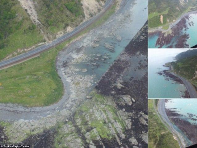 Động đất kéo đáy biển lên cao 2m ở New Zealand - 4
