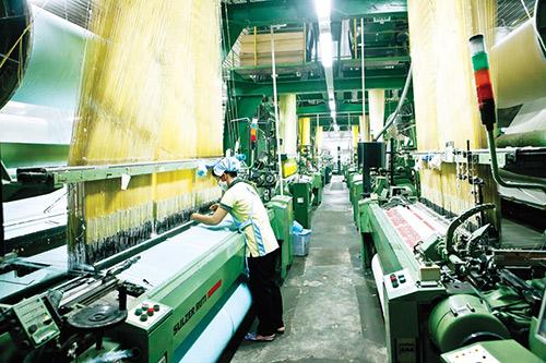 Khăn bông Mollis - Chất lượng của một thương hiệu Việt - 2