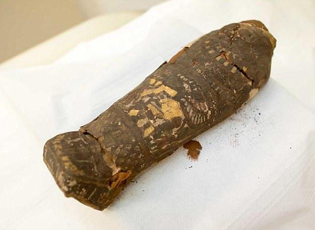 Tìm thấy xác ướp trẻ nhất thế giới cách đây 2.300 năm - 1