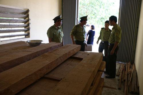 Giám đốc sở lấy trụ sở chứa gỗ trái phép - 1