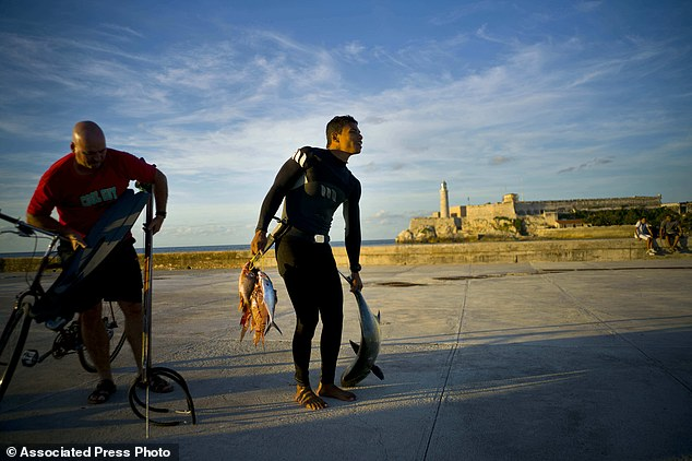 Cuba: Dùng bao cao su bắt cá ngừ bạc triệu - 4