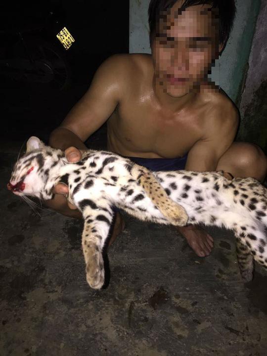 Thanh niên khoe ảnh làm thịt mèo rừng quý hiếm trên facebook - 2
