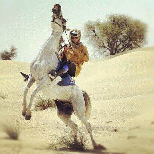 Thú vui chơi xa xỉ của Thái tử đẹp trai nhất Dubai - 7