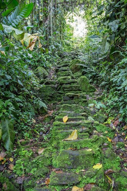 Choáng ngợp với thành phố cổ đang khai quật tại Colombia - 1