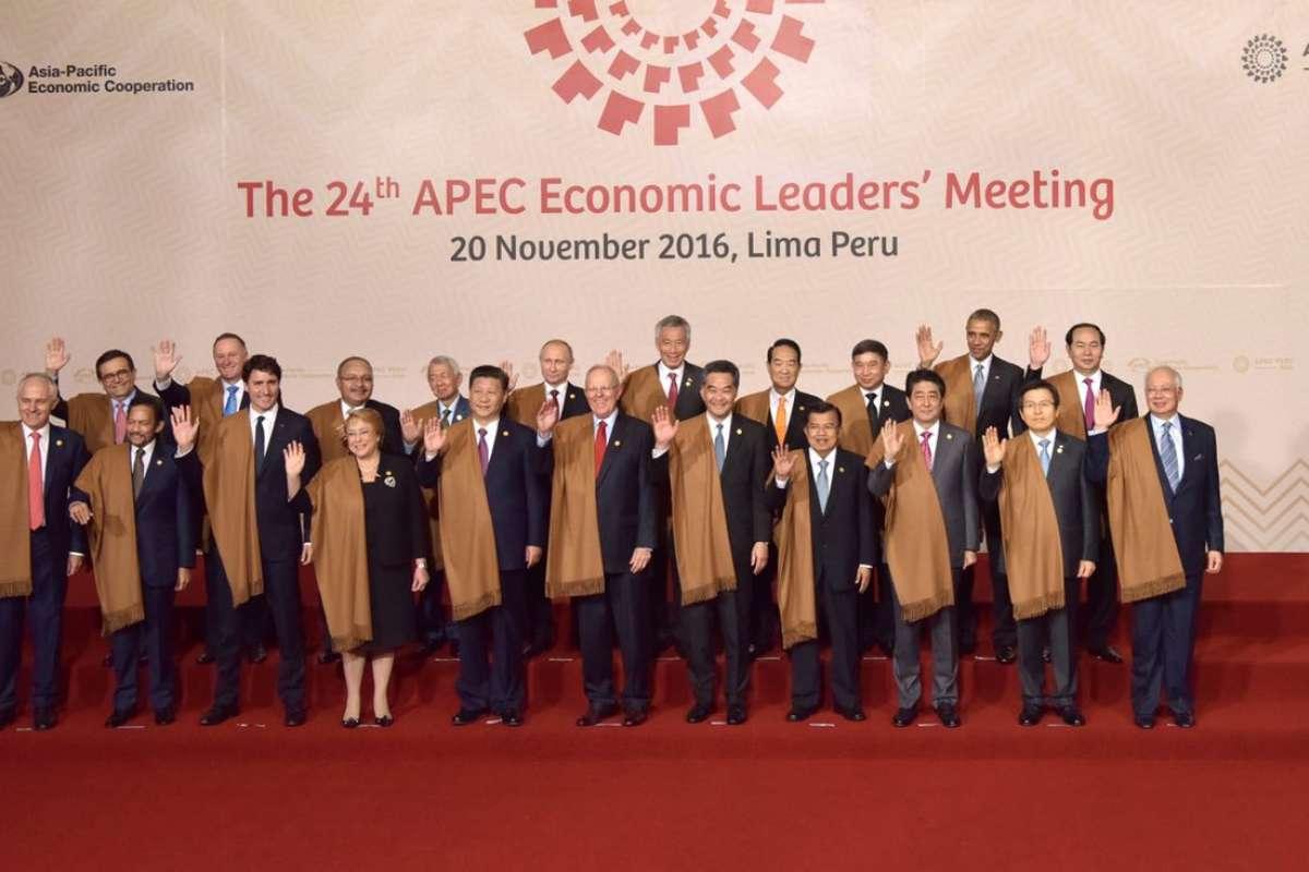APEC 2016: Nguyên thủ mặc áo len cực hiếm trên thế giới - 1