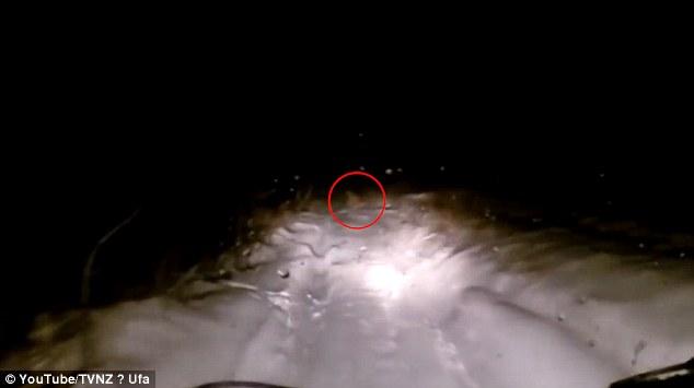 Video: Quái vật Yeti băng qua đường ở Nga? - 1