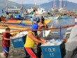 TQ hứa để ngư dân Philippines vào bãi cạn Scarborough
