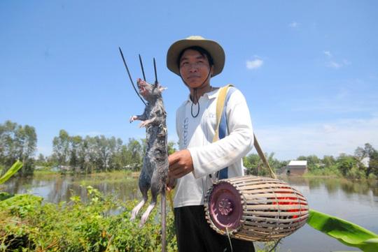 Về miền Tây xem chó săn chuột đồng mùa nước nổi - 3