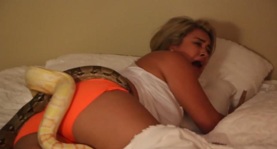 Cô gái đang ngủ bị bạn trai thả 2 con trăn lên người - 2