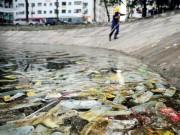 Tin tức trong ngày - Bao cao su ngập hồ Linh Đàm: Đề nghị cảnh sát môi trường điều tra