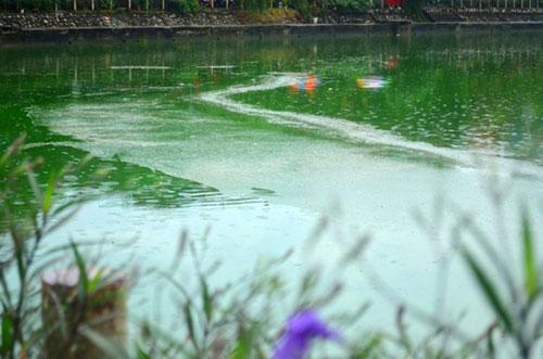 """Sông hồ Hà Nội: Những """"lá phổi"""" chết giữa Thủ đô - 5"""