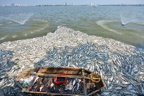 """Sông hồ Hà Nội: Những """"lá phổi"""" chết giữa Thủ đô - 7"""