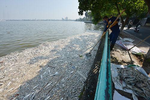 """Sông hồ Hà Nội: Những """"lá phổi"""" chết giữa Thủ đô - 8"""