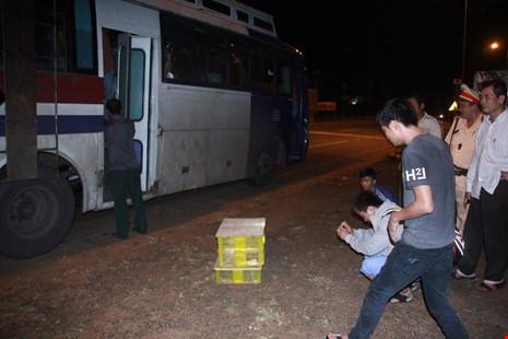 Phát hoảng vì hơn trăm con rắn hổ mang trên xe khách - 2