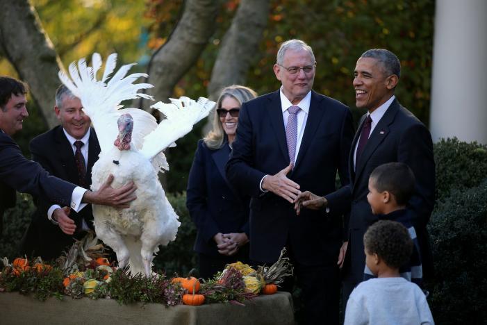 Ông Obama xá tội gà tây lần cuối cùng ở Nhà Trắng - 2