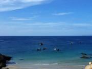 Bác đề xuất cắt hơn 1.000 ha khu bảo tồn Hòn Cau