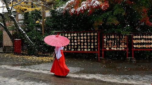 Ngắm tuyết rơi sớm tuyệt đẹp ở Nhật Bản - 14