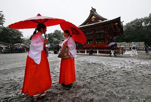 Ngắm tuyết rơi sớm tuyệt đẹp ở Nhật Bản - 9