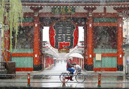 Ngắm tuyết rơi sớm tuyệt đẹp ở Nhật Bản - 3