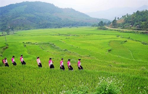 Khám phá thác Ma Hao hoang sơ giữa núi rừng xứ Thanh - 4