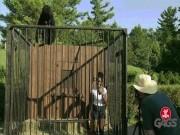 """Video Clip Cười - Đang """"tự sướng"""", bị khỉ đột dọa cho phát khiếp"""