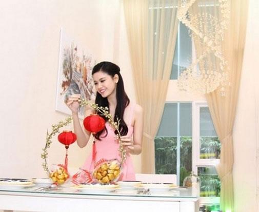 Bất ngờ khối tài sản của vợ chồng Trương Quỳnh Anh - 6
