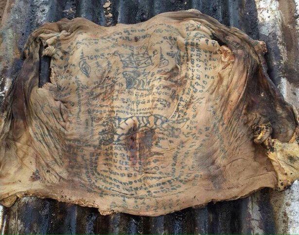 Phát hiện xác xăm kín người, da còn nguyên vẹn ở Thái Lan - 2