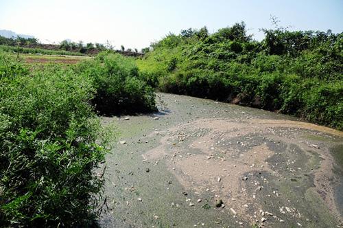 Phát hiện bãi thải ven sông Hồng ngập trắng bao cao su - 2