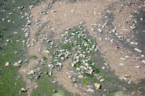 Phát hiện bãi thải ven sông Hồng ngập trắng bao cao su - 3