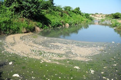 Phát hiện bãi thải ven sông Hồng ngập trắng bao cao su - 1