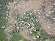 Tin tức trong ngày - Phát hiện bãi thải ven sông Hồng ngập trắng bao cao su
