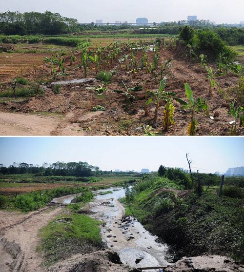 Xóa sổ bãi thải ven sông Hồng ngập trắng bao cao su - 1