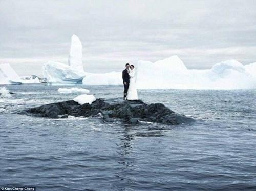 Cặp đôi đến Nam Cực làm đám cưới cùng chim cánh cụt - 1