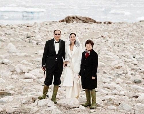 Cặp đôi đến Nam Cực làm đám cưới cùng chim cánh cụt - 4