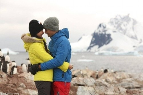 Cặp đôi đến Nam Cực làm đám cưới cùng chim cánh cụt - 8