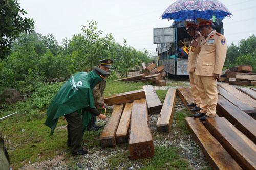 Bị phát hiện vận chuyển gỗ hiếm, trùm gỗ lậu bỏ trốn - 2