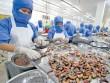 Cả năm xuất khẩu tôm dự kiến đạt 3,1 tỷ USD