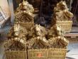 """Cận cảnh những """"anh em song sinh"""" của ấn rồng ở Nghệ An"""