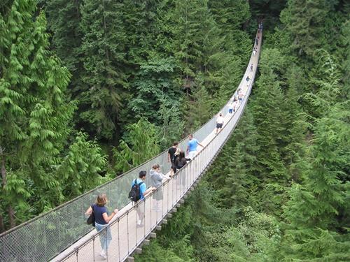 """15 cây cầu """"điên rồ"""" và đáng sợ nhất thế giới (P.1) - 10"""