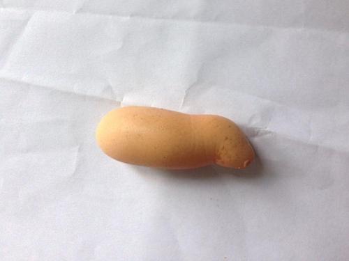 Kỳ lạ quả trứng gà giống… con heo - 3
