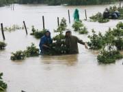 Tin tức trong ngày - Mưa lũ ở Quảng Ngãi, Bình Định làm 8 người chết và bị thương