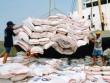 WB khuyến cáo Việt Nam cần định vị thương hiệu gạo