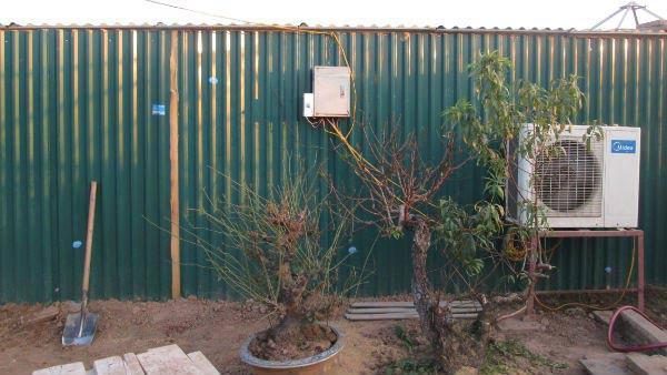 Vườn đào Nhật Tân bạc tỷ lắp điều hòa để bung hoa đúng Tết - 5