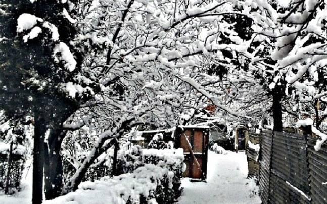 Nghẹt thở vì vẻ đẹp của ngôi làng tuyết phủ ở Ấn Độ - 1