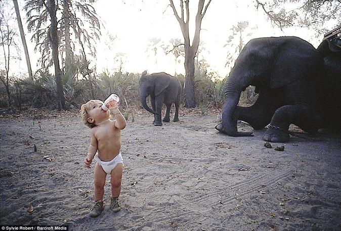 Bé gái Tây 10 năm ở châu Phi cùng báo đốm, voi và rắn - 2