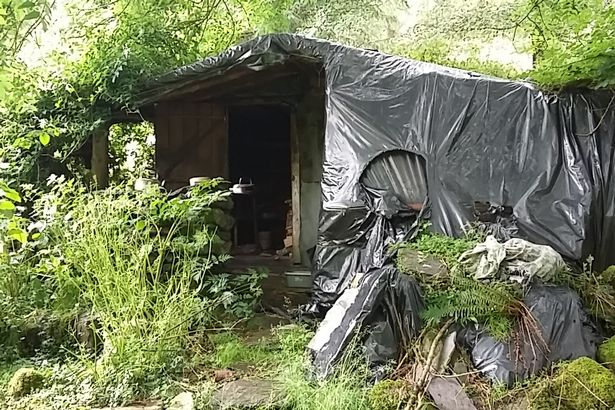 Cái chết bí ẩn của người đàn ông sống khỏa thân 20 năm trong rừng - 2
