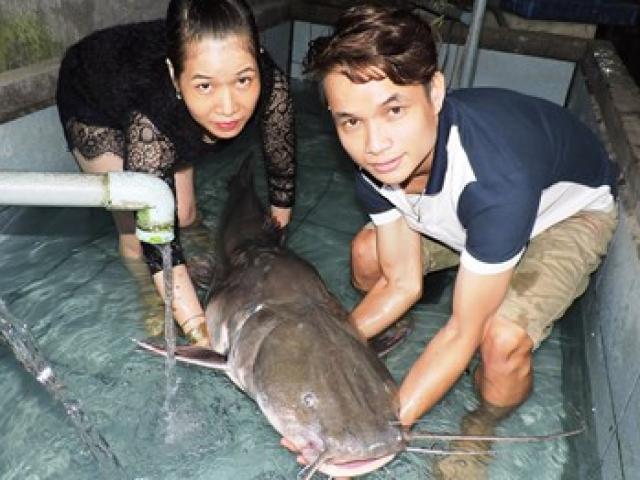 Ngư dân Nghệ An câu được cá Lệch khủng, dài 1,7m - 3